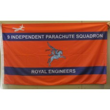 9 INDEPENDENT PARA RE - 5ft x 3ft